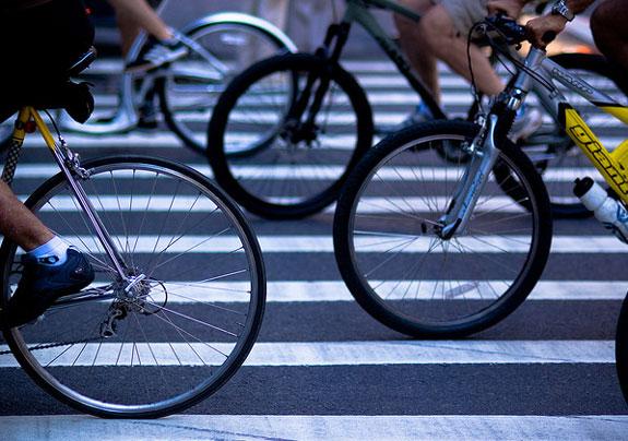 biciclea